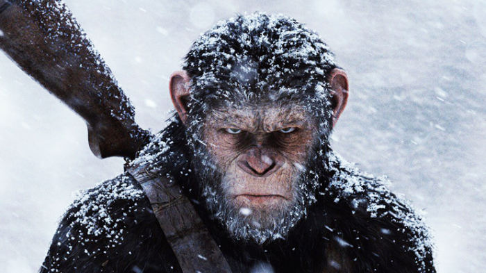 war-for-the-planetoftheapes-yomzansi
